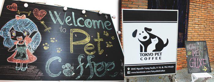 【TOKYO PET CENTER】ペットを飼いたい人大注目!TOKYO PET CENTERよりセール販売のお知らせ!