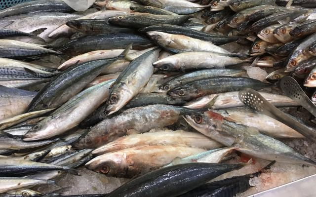 ベトナムで食べられている魚の種類図鑑|代表的な白身魚や魚肉ソーセージも紹介