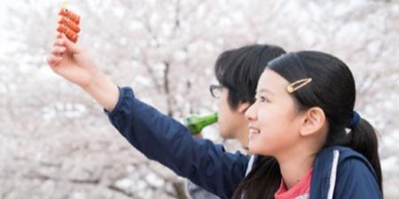 日本映画祭、ベトナム各地で週末に開催へ,ベトナム,映画,日本,祭