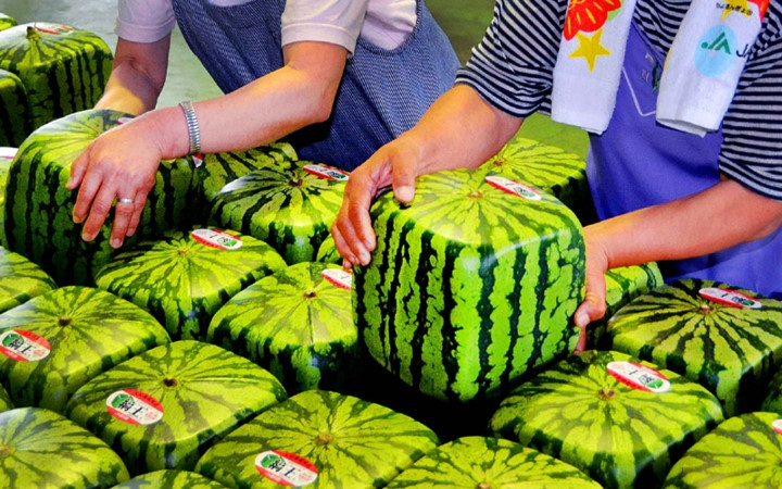 輸入果物、ベトナム人からの人気高まる,ベトナム, 輸入果物, 国産果物, ベトナム人消費者,