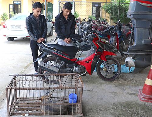 ベトナム中部で犬数百匹窃盗、兄弟2人を逮捕